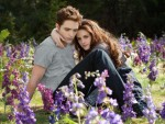Twilight series may continue