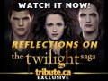 The Twilight Saga: Reflections feature